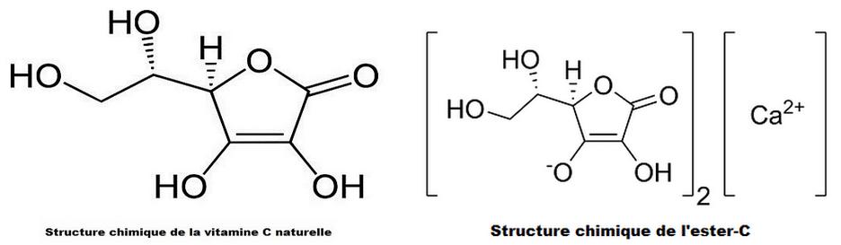 vitamine c et ester-c