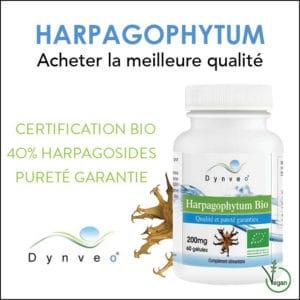 Harpagophytum bio Dynveo